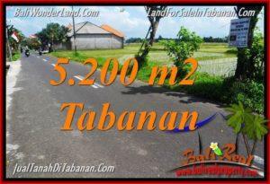 FOR SALE Exotic LAND IN Tabanan Kediri BALI TJTB351