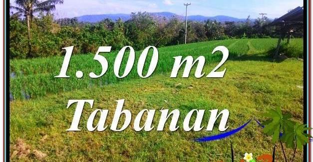 FOR SALE Exotic PROPERTY LAND IN TABANAN TJTB353