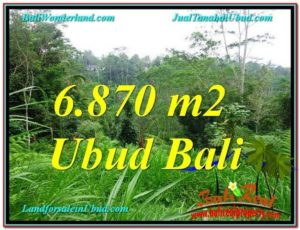 FOR SALE Magnificent 6,870 m2 LAND IN UBUD TJUB602