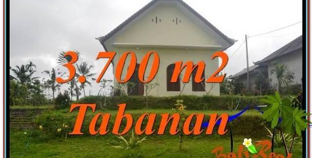 Exotic PROPERTY 3,700 m2 LAND FOR SALE IN Tabanan Penebel TJTB336