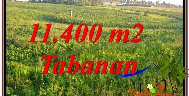 11,400 m2 LAND FOR SALE IN Tabanan Selemadeg TJTB339
