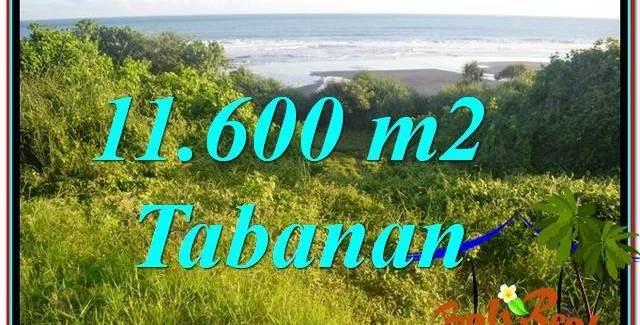 Magnificent PROPERTY TABANAN 11,600 m2 LAND FOR SALE TJTB340