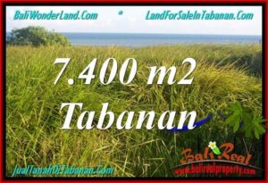 Affordable LAND SALE IN Tabanan Selemadeg BALI TJTB341