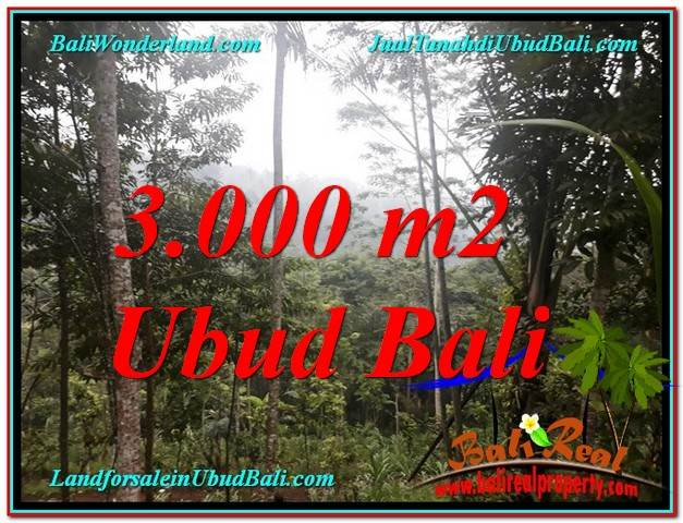 Affordable 3,000 m2 LAND IN UBUD BALI FOR SALE TJUB617