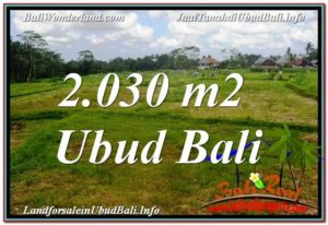 Magnificent PROPERTY Ubud Tegalalang 2,030 m2 LAND FOR SALE TJUB623