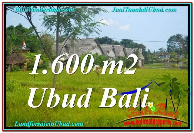 FOR SALE Beautiful PROPERTY 1,600 m2 LAND IN UBUD TJUB633