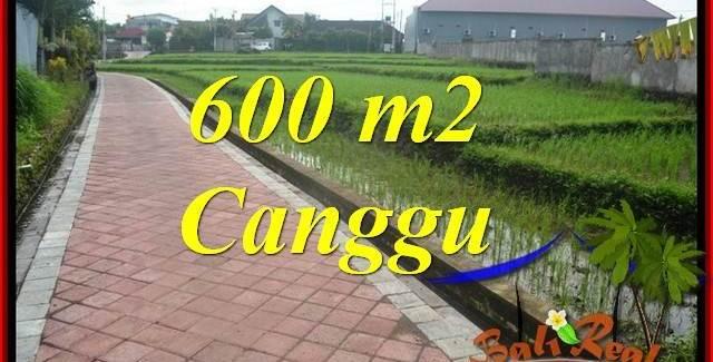 Exotic PROPERTY LAND IN Canggu Brawa BALI FOR SALE TJCG220