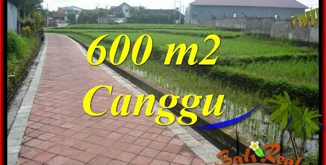 FOR SALE Magnificent PROPERTY 600 m2 LAND IN Canggu Brawa BALI TJCG220