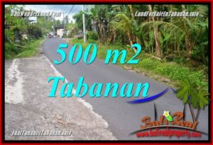 Magnificent PROPERTY TABANAN 500 m2 LAND FOR SALE TJTB362