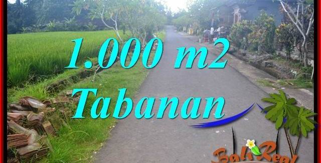Exotic 1,000 m2 LAND IN TABANAN FOR SALE TJTB363