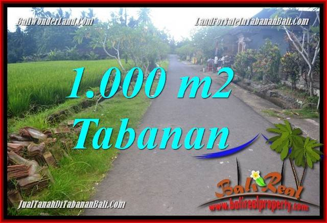 TABANAN BALI 1,000 m2 LAND FOR SALE TJTB363