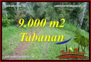 FOR SALE Beautiful LAND IN Tabanan Selemadeg Timur TJTB364
