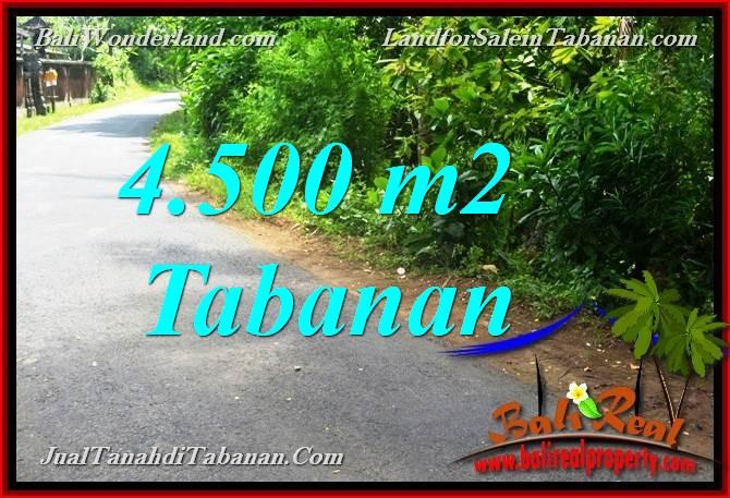 4,500 m2 LAND IN TABANAN FOR SALE TJTB380