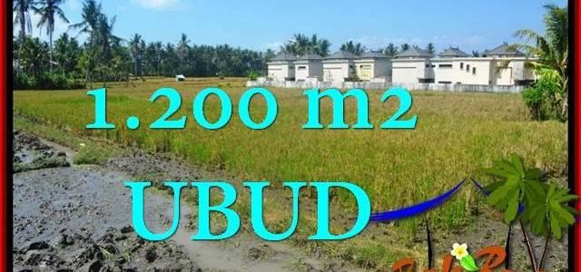 Affordable PROPERTY LAND SALE IN Sentral Ubud TJUB663