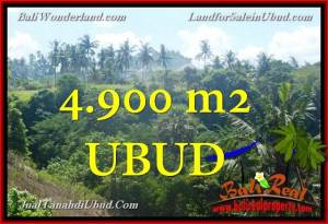 Exotic PROPERTY 4,900 m2 LAND IN Ubud Gianyar FOR SALE TJUB665