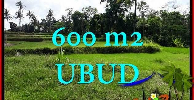 FOR SALE Affordable LAND IN UBUD BALI TJUB657