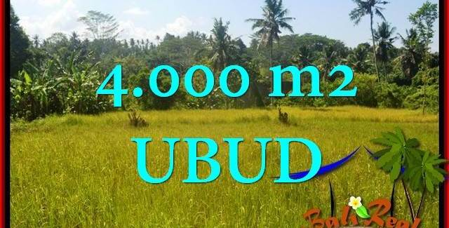 Exotic 4,000 m2 LAND FOR SALE IN UBUD TJUB661