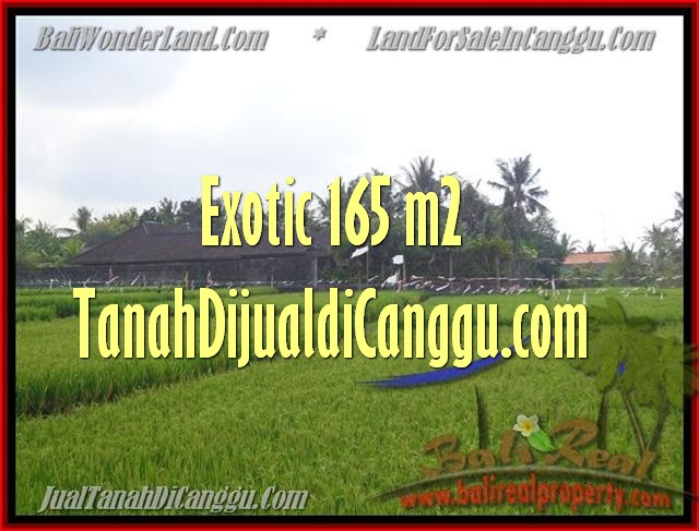 FOR SALE Beautiful PROPERTY 1.650 m2 LAND IN CANGGU BALI TJCG158