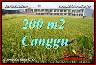 Exotic CANGGU 200 m2 LAND FOR SALE TJCG229 FOR SALE LAND IN BALI