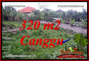 FOR SALE Exotic 320 m2 LAND IN CANGGU PERERENAN BALI TJCG231