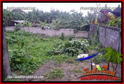 FOR SALE Magnificent LAND IN CANGGU PERERENAN TJCG231