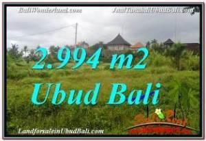 Magnificent LAND SALE IN UBUD TJUB672