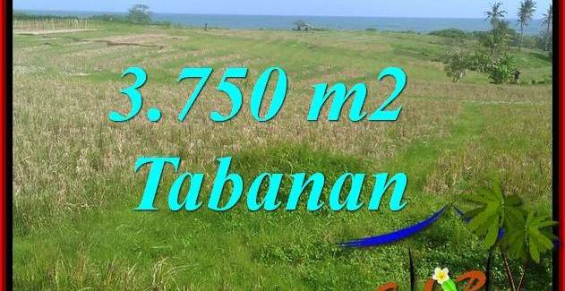 FOR SALE Magnificent LAND IN TABANAN BALI TJTB382