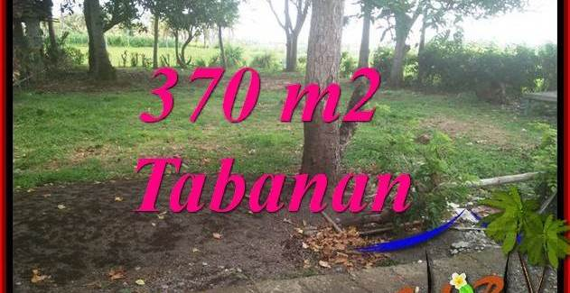 TABANAN SELEMADEG BALI LAND FOR SALE TJTB383