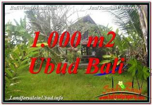 1,000 m2 LAND SALE IN SENTRAL UBUD TJUB680