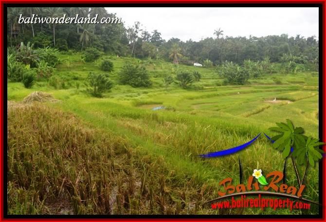 Beautiful Property 2,000 m2 Land for sale in Tabanan Selemadeg Bali TJTB396