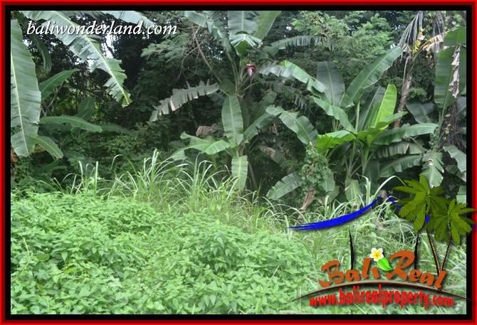 Beautiful Property 2,000 m2 Land in Tabanan Selemadeg Bali for sale TJTB398