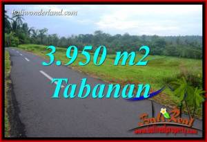 3,950 m2 Land for sale in Tabanan Bali TJTB402