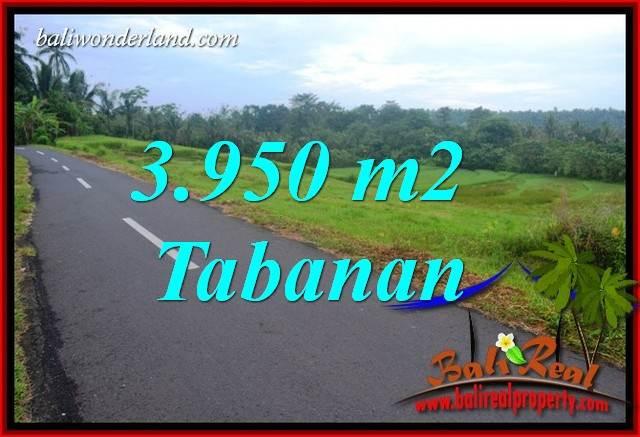 3,950 m2 Land in Tabanan Bali for sale TJTB402