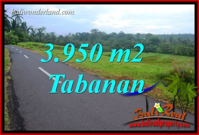 3,950 m2 Land for sale in Tabanan Bali TJTB402