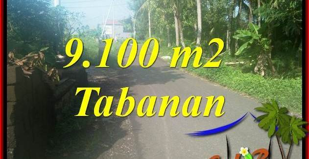 Exotic 9,100 m2 Land sale in Tabanan Bali TJTB407