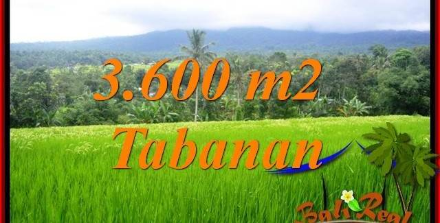 Affordable Property Tabanan Penebel 3,600 m2 Land for sale TJTB415