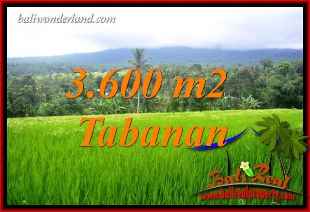 Magnificent Property 3,600 m2 Land sale in Tabanan Penebel TJTB415