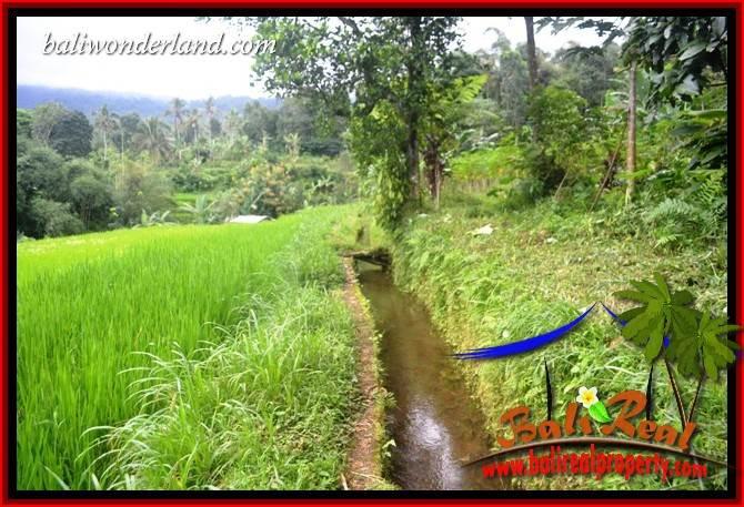 Affordable Tabanan Bali 3,600 m2 Land for sale TJTB415