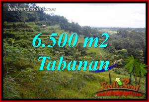 Exotic Land for sale in Tabanan TJTB416