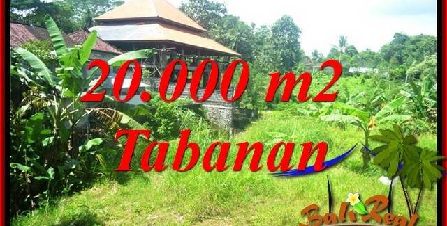FOR sale 20,000 m2 Land in Tabanan Bali TJTB418
