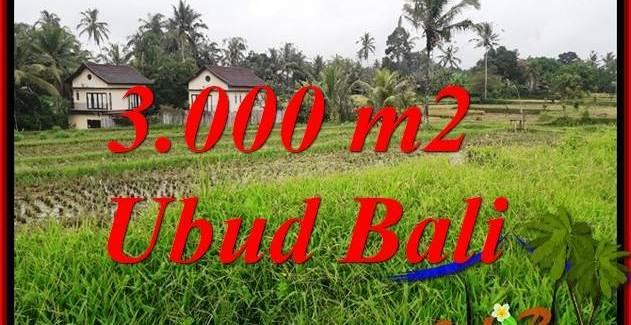 Beautiful Land in Ubud for sale TJUB698