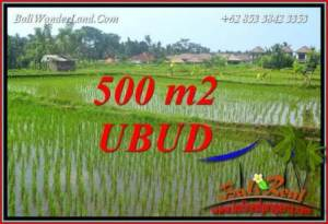 Beautiful 500 m2 Land for sale in Sentral Ubud TJUB708