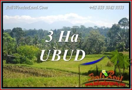 Affordable Property 30,000 m2 Land sale in Ubud Tegalalang Bali TJUB718