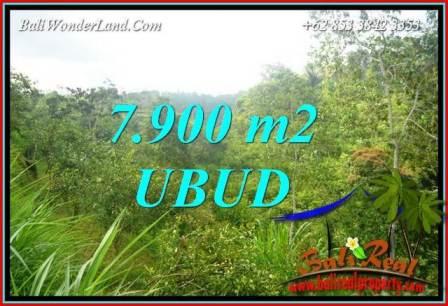 Affordable Property Land in Ubud Bali for sale TJUB729