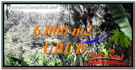 FOR SALE Affordable LAND IN Ubud Payangan TJUB750