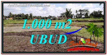 FOR SALE Cheap LAND IN UBUD BALI TJUB765