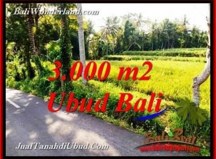 Cheap LAND FOR SALE IN UBUD BALI TJUB771