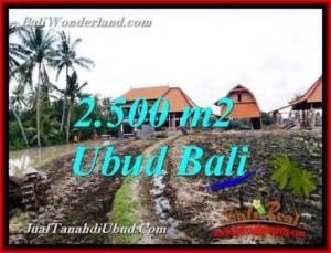 Affordable LAND FOR SALE IN UBUD TJUB772