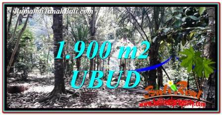Affordable PROPERTY 1,900 m2 LAND IN Ubud Tampak Siring FOR SALE TJUB755