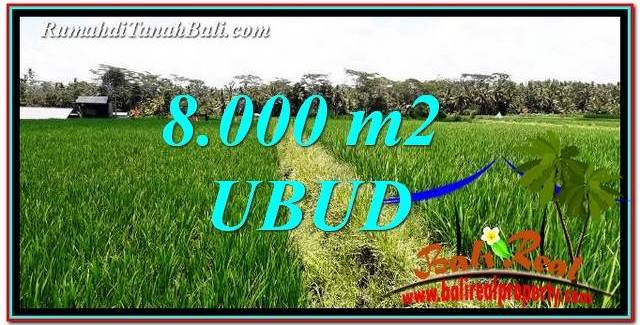 Beautiful 8,000 m2 LAND FOR SALE IN Ubud Pejeng TJUB763